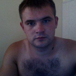Саша, 28 лет, Подольск