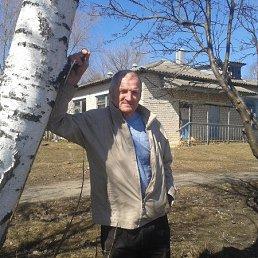 владимир, 65 лет, Донской