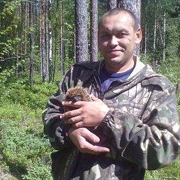 Николай, 45 лет, Неболчи