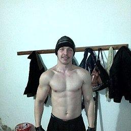 Пётр, 26 лет, Кинель