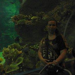 Елена, 29 лет, Верхняя Пышма