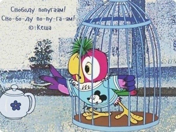 Любимые цитаты из советских мультфильмов - 7