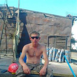Серёга, 33 года, Новобурейский
