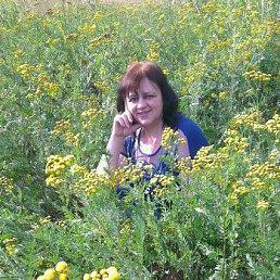 Фото Ольга, Ульяновск - добавлено 13 ноября 2014