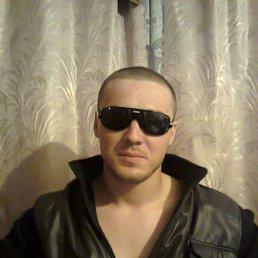 Михаил, 29 лет, Ахтырка
