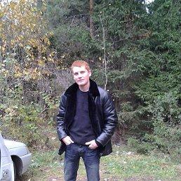 Николай, 26 лет, Ядрин