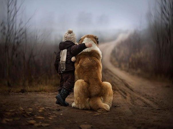 Подписывайтесь на нас: http://fotostrana.ru/public/233467 ;-) Маленькие дети и их большие друзья. - 7