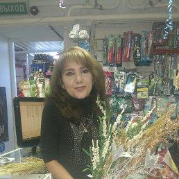 Sharlotka-, 32 года, Сургут