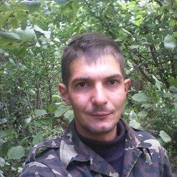 Максим, 30 лет, Сарны