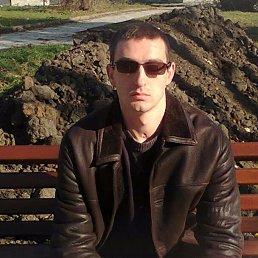 Руслан, 34 года, Золочев