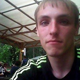 роман, 29 лет, Узловая
