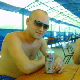 Олег, 29 лет, Доброполье