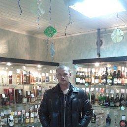 Александор, 39 лет, Кувшиново
