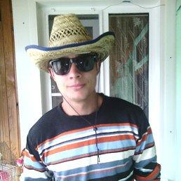 Алексей, 26 лет, Белая Холуница