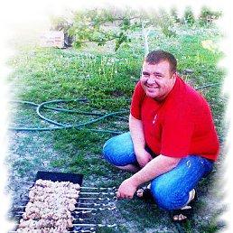 Анатолий, 34 года, Новоселица