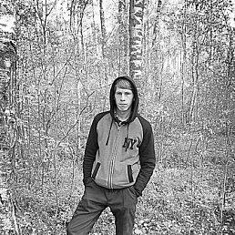 владислав, 24 года, Толмачево