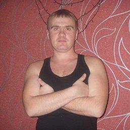 Вячеслав, 35 лет, Калниболотская