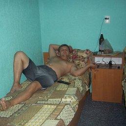 виталя, 35 лет, Украинск