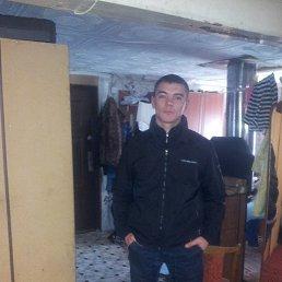 Юрий, 29 лет, Любытино