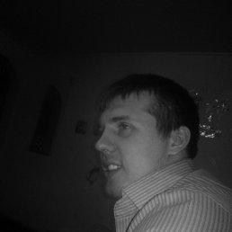 Дмитрий, 28 лет, Опочка
