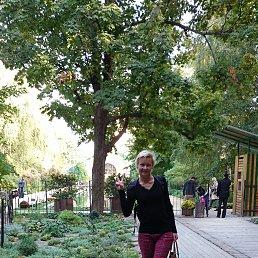 Фото Татьяна, Ялта, 39 лет - добавлено 23 декабря 2014