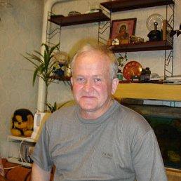 Геннадий, 65 лет, Сим