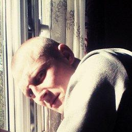 Денис, 28 лет, Ромны