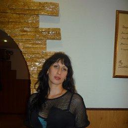 Елена, 40 лет, Волжский