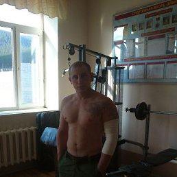 Николай, 29 лет, Подольск