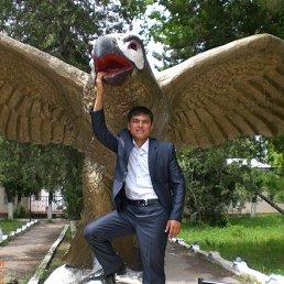 Alisherbek, 34 года, Москва