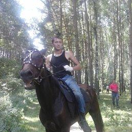 Владимир, 29 лет, Озеры