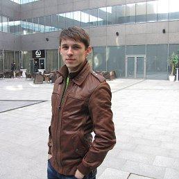Андрей, 28 лет, Лубны
