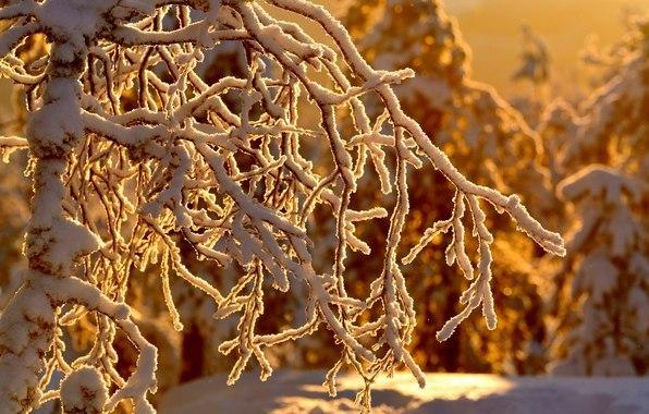 И все - таки зима прекрасна!