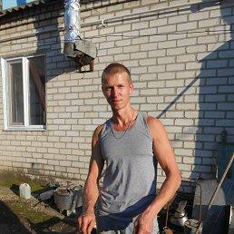 Алексей, 36 лет, Кегичевка