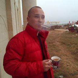 Вячеслав, 34 года, Новая Водолага
