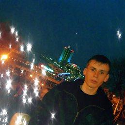 миша, 29 лет, Беляевка