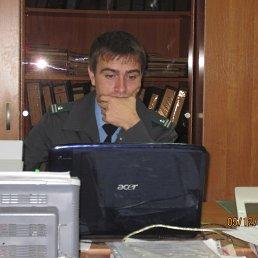 николай, 34 года, Персиановский