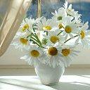 Фото Виктория, Николаев, 48 лет - добавлено 15 марта 2015