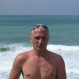 Василий, 43 года, Черусти