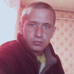 Сергей, 33 года, Голованевск