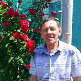 Владимир, 65 лет, Красный Луч