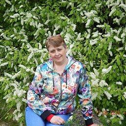 Леночка, 53 года, Новокузнецк