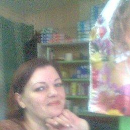Ольга, 42 года, Белев