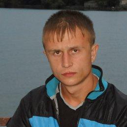 Андрей, 31 год, Овидиополь