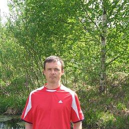 Владимир, 39 лет, Койгородок