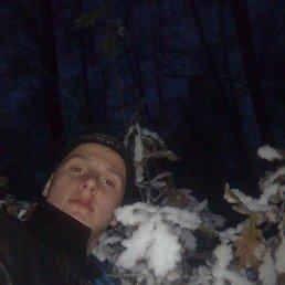 Вадім, 24 года, Новоград-Волынский