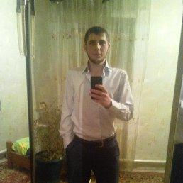 Дима, 25 лет, Мелитополь