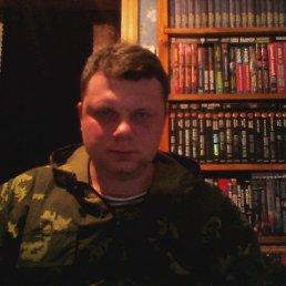 Сергей, 40 лет, Новый Оскол