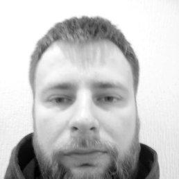 Андрей Сороков, 36 лет, Москва