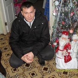 герман, 40 лет, Верея